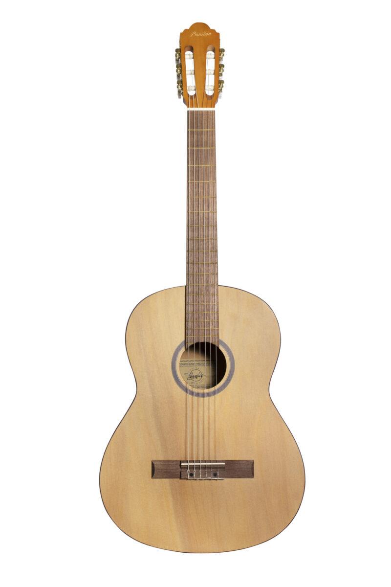 Studio Classic Guitar