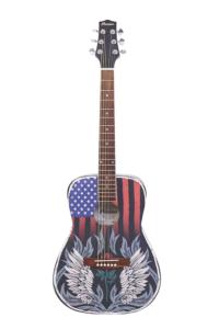 USA-TRIP-ACOUSTIC-GUITAR_1